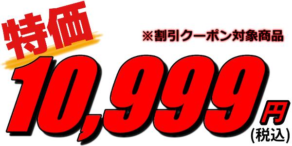 FallenX覇王REGULAR Ver. 特別価格